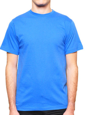 1001 Royal Lightweight Ringspun Cotton T-Shirt